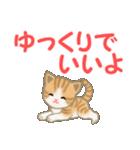 ちび猫 家族連絡(個別スタンプ:28)