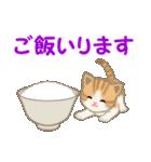 ちび猫 家族連絡(個別スタンプ:30)