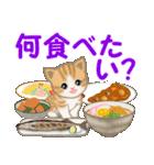 ちび猫 家族連絡(個別スタンプ:33)
