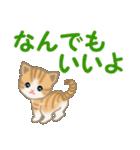 ちび猫 家族連絡(個別スタンプ:34)