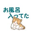 ちび猫 家族連絡(個別スタンプ:37)