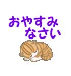 ちび猫 家族連絡(個別スタンプ:40)