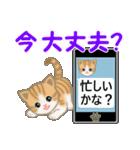 ちび猫 家族連絡2(個別スタンプ:1)