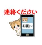 ちび猫 家族連絡2(個別スタンプ:5)