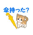 ちび猫 家族連絡2(個別スタンプ:15)