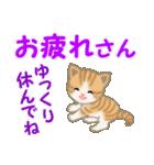 ちび猫 家族連絡2(個別スタンプ:27)