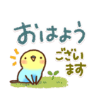 毎日&時々楽しい「インコちゃん」(個別スタンプ:1)