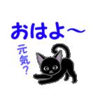黒猫くろまる 毎日使う言葉(個別スタンプ:1)