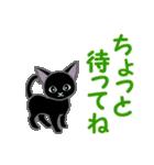 黒猫くろまる 毎日使う言葉(個別スタンプ:19)