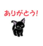 黒猫くろまる 毎日使う言葉(個別スタンプ:25)