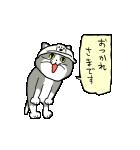 動くぞ!仕事猫(個別スタンプ:10)
