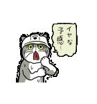 動くぞ!仕事猫(個別スタンプ:23)