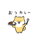 ゆる柴犬スタンプ13・ダジャレ(個別スタンプ:01)
