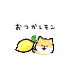 ゆる柴犬スタンプ13・ダジャレ(個別スタンプ:03)