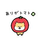 ゆる柴犬スタンプ13・ダジャレ(個別スタンプ:11)