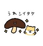 ゆる柴犬スタンプ13・ダジャレ(個別スタンプ:16)