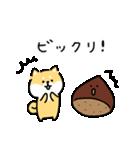 ゆる柴犬スタンプ13・ダジャレ(個別スタンプ:32)
