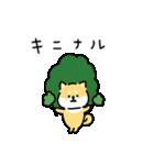 ゆる柴犬スタンプ13・ダジャレ(個別スタンプ:33)