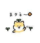 ゆる柴犬スタンプ13・ダジャレ(個別スタンプ:40)