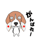 超元気なビーグル犬(個別スタンプ:5)