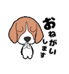 超元気なビーグル犬(個別スタンプ:7)
