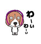 超元気なビーグル犬(個別スタンプ:13)