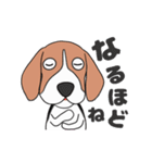 超元気なビーグル犬(個別スタンプ:15)