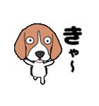 超元気なビーグル犬(個別スタンプ:16)