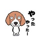 超元気なビーグル犬(個別スタンプ:20)
