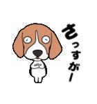 超元気なビーグル犬(個別スタンプ:21)