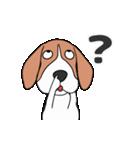 超元気なビーグル犬(個別スタンプ:22)