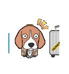 超元気なビーグル犬(個別スタンプ:24)