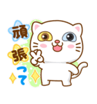 猫カオマニー眼2色(セット2)(個別スタンプ:10)