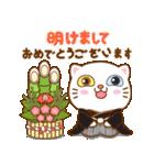 猫カオマニー眼2色(セット2)(個別スタンプ:33)