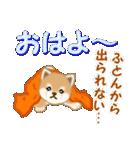 よちよち豆柴 優しい冬(個別スタンプ:2)