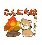 よちよち豆柴 優しい冬(個別スタンプ:3)