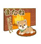 よちよち豆柴 優しい冬(個別スタンプ:7)