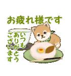 よちよち豆柴 優しい冬(個別スタンプ:10)