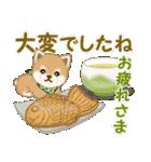 よちよち豆柴 優しい冬(個別スタンプ:12)