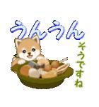 よちよち豆柴 優しい冬(個別スタンプ:15)