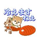 よちよち豆柴 優しい冬(個別スタンプ:20)