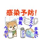 よちよち豆柴 優しい冬(個別スタンプ:22)