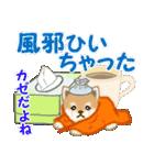 よちよち豆柴 優しい冬(個別スタンプ:24)