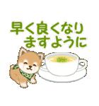 よちよち豆柴 優しい冬(個別スタンプ:26)