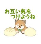 よちよち豆柴 優しい冬(個別スタンプ:28)