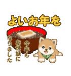 よちよち豆柴 優しい冬(個別スタンプ:36)