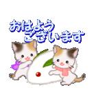 三毛猫ツインズ 優しい冬(個別スタンプ:1)