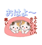 三毛猫ツインズ 優しい冬(個別スタンプ:2)
