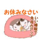 三毛猫ツインズ 優しい冬(個別スタンプ:6)
