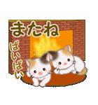 三毛猫ツインズ 優しい冬(個別スタンプ:7)